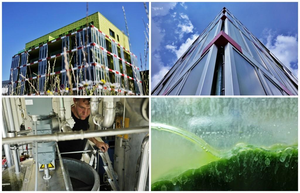 bioreactor pics2