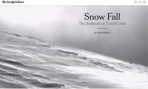 Screen shot of Snow Fall feature